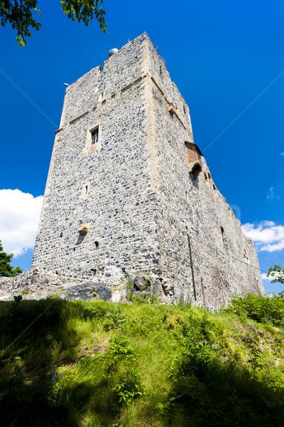 ruins of Radyne Castle, Czech Republic Stock photo © phbcz