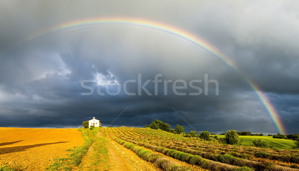 chapel with lavender field and rainbow, Plateau de Valensole, Pr Stock photo © phbcz