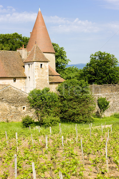 Chateau de Nobles, Burgundy, France Stock photo © phbcz