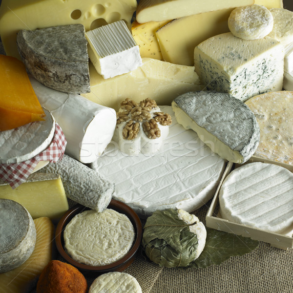 cheese still life Stock photo © phbcz