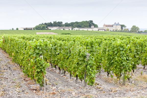 виноградник регион Франция здании архитектура завода Сток-фото © phbcz