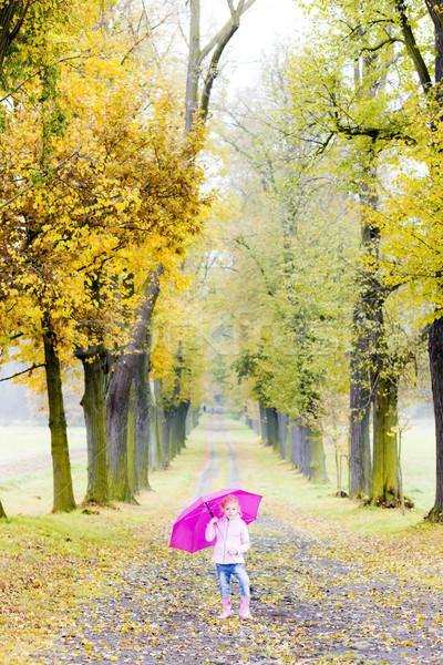Stok fotoğraf: Küçük · kız · şemsiye · sonbahar · geçit · kız · çocuk