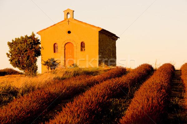 Foto stock: Capela · campo · de · lavanda · planalto · flor · flores · edifício