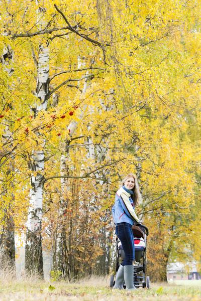 Donna carrozzina piedi natura famiglia Foto d'archivio © phbcz