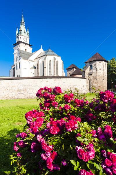 Château église saint Slovaquie bâtiment rose Photo stock © phbcz