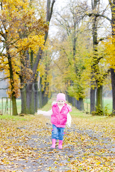 little girl in autumnal alley Stock photo © phbcz