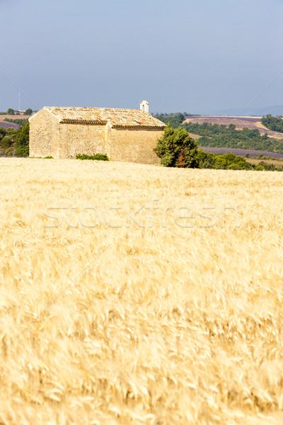 chapel with grain field near Entrevennes, Plateau de Valensole,  Stock photo © phbcz