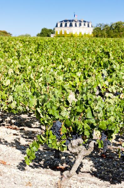 Chateau de la Tour, By, Bordeaux Region, France Stock photo © phbcz