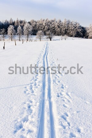 Stock photo: winter landscape, Czech Republic