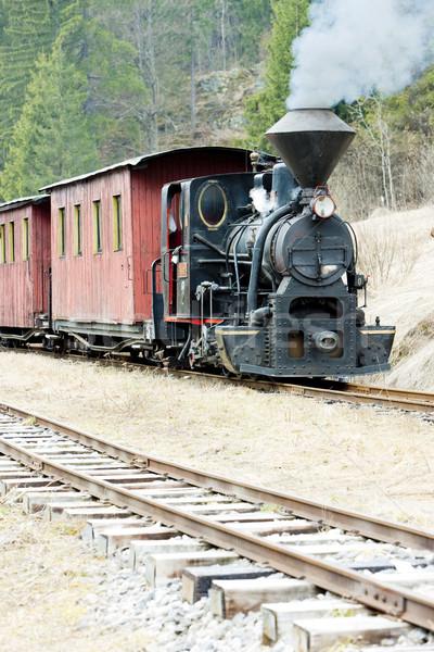 пар поезд железная дорога Словакия дым путешествия Сток-фото © phbcz