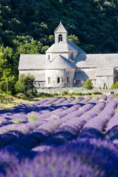 Stockfoto: Abdij · lavendel · veld · Frankrijk · bloem · gebouw · reizen