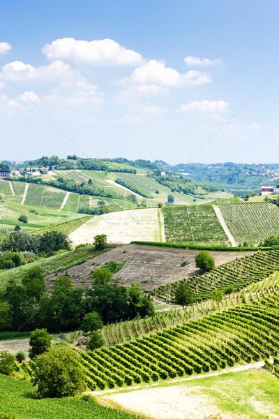 Régió Olaszország Európa mezőgazdaság természetes kint Stock fotó © phbcz