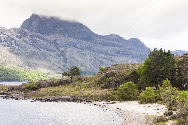 Loch Maree, Highlands, Scotland Stock photo © phbcz