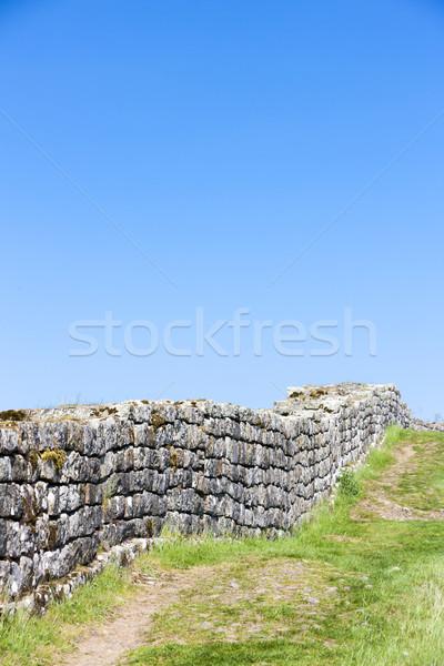 Hadrian's wall, Northumberland, England Stock photo © phbcz