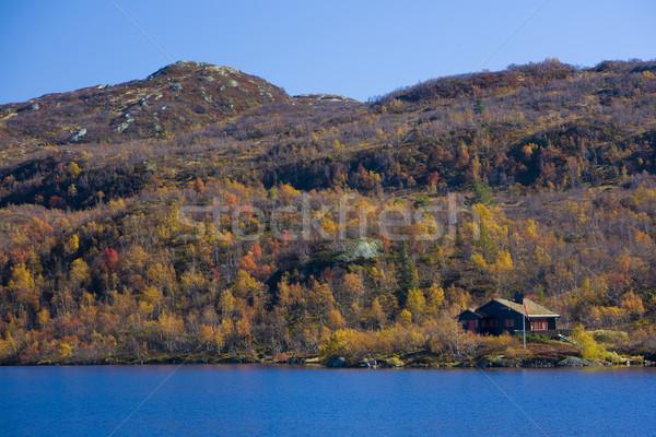 mountain range near Urdvassheii Peak, Norway Stock photo © phbcz