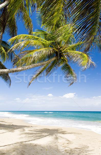 Sauteurs Bay, Grenada Stock photo © phbcz