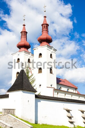 fortified church of All Saints, Divin, Slovakia Stock photo © phbcz