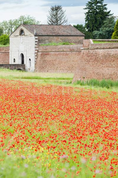 укрепление город Италия цветок здании стены Сток-фото © phbcz