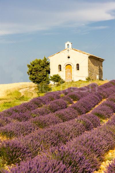 Chapelle champ de lavande plateau église architecture usine Photo stock © phbcz