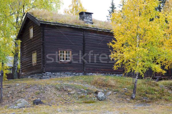 scanzen, Fagernes, Norway Stock photo © phbcz