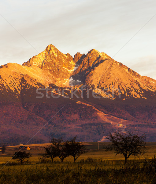 surroundings of Lomnicky Peak, Vysoke Tatry (High Tatras), Slova Stock photo © phbcz