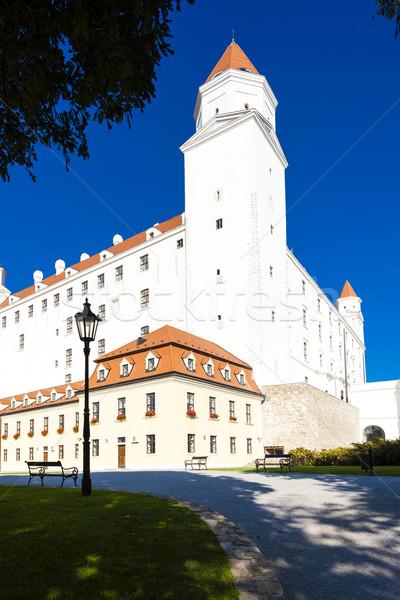 Bratislava castel Slovacia casă constructii călători Imagine de stoc © phbcz