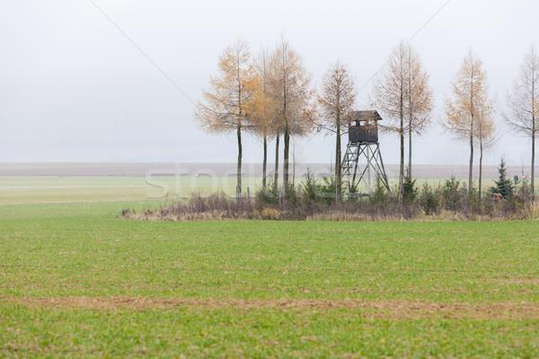 Paisagem alto assento República Checa árvore Foto stock © phbcz