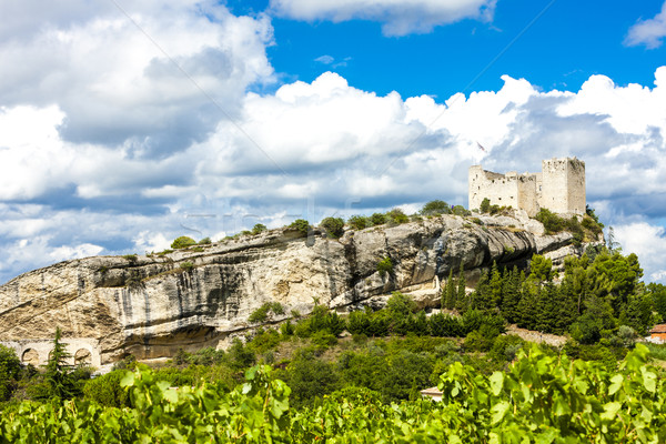 ruins of castle in Vaison-la-Romaine with vineyard, Provence, Fr Stock photo © phbcz