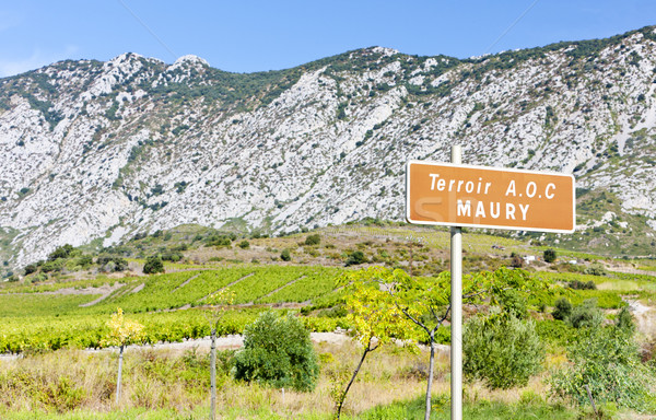 vineyar of Maury in Languedoc-Roussillon, France Stock photo © phbcz
