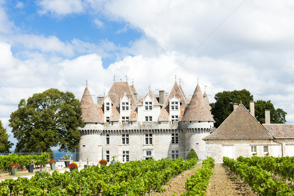 Monbazillac Castle with vineyard, Aquitaine, France Stock photo © phbcz