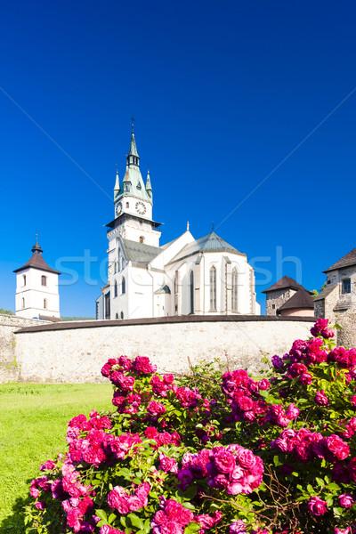 Kale kilise aziz Slovakya Bina gül Stok fotoğraf © phbcz
