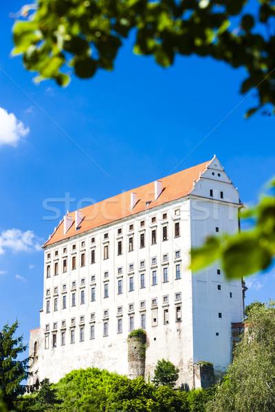 Pałac Czechy budynku podróży architektury Europie Zdjęcia stock © phbcz