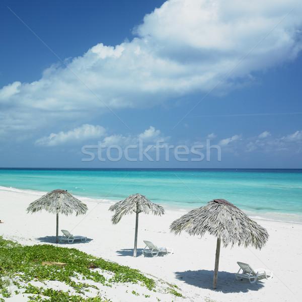 Cuba plage eau mer été paradis Photo stock © phbcz