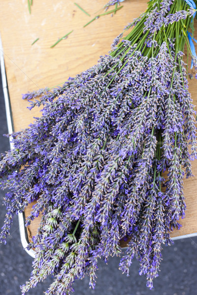 bunch of lavenders, market in Nyons, Rhone-Alpes, France Stock photo © phbcz