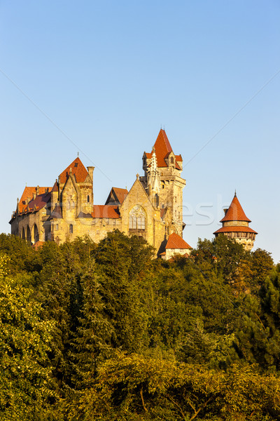 замок снизить Австрия путешествия архитектура Сток-фото © phbcz