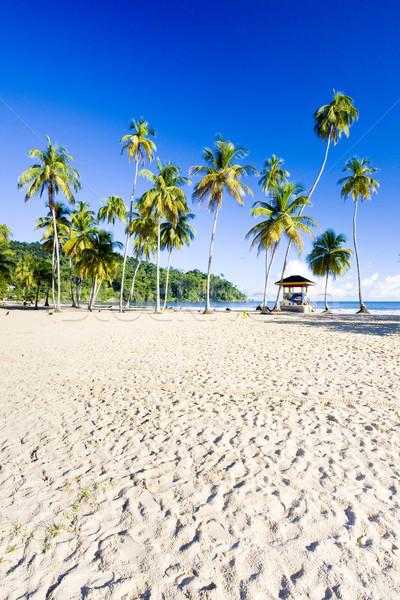 cabin on the beach, Maracas Bay, Trinidad Stock photo © phbcz