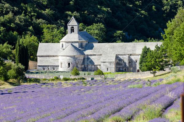 аббатство Франция цветок здании путешествия Сток-фото © phbcz