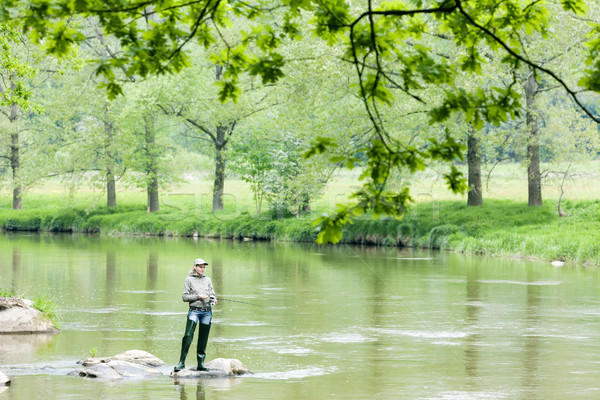 woman fishing in Sazava river, Czech Republic Stock photo © phbcz