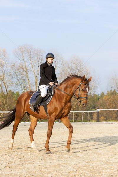 equestrian on horseback Stock photo © phbcz
