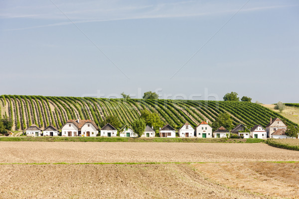 wine cellars with vineyard, Diepolz, Lower Austria, Austria Stock photo © phbcz