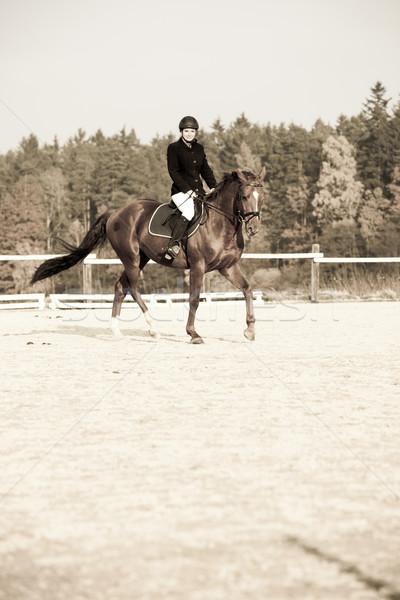 верхом женщины лошади работает расслабиться Сток-фото © phbcz