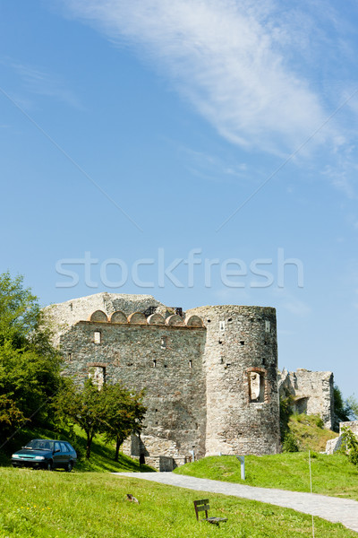 Devin Castle, Slovakia Stock photo © phbcz