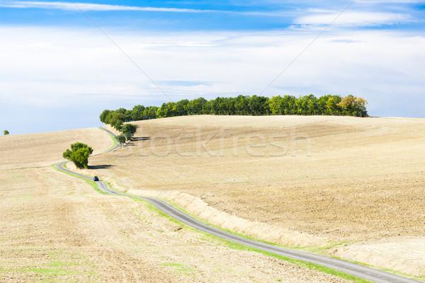 Campo carretera departamento Francia paisaje planta Foto stock © phbcz