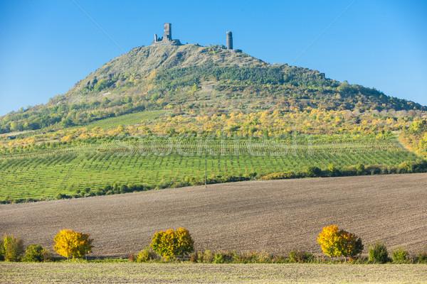 руин замок Чешская республика здании пейзаж путешествия Сток-фото © phbcz