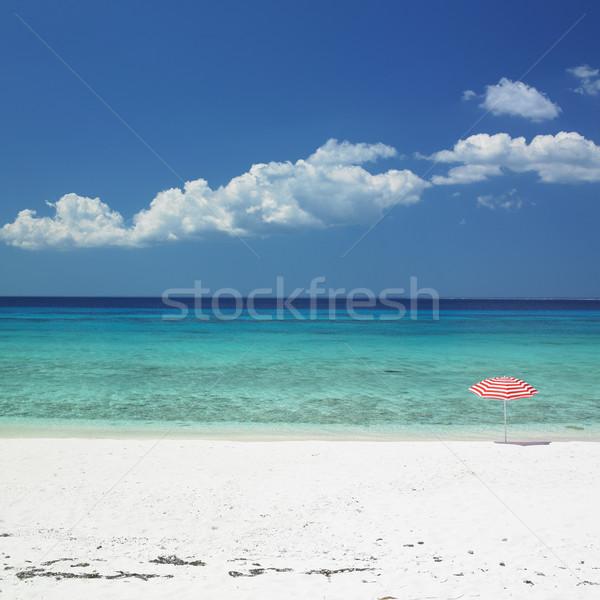 サンシェード ビーチ 海 夏 傘 楽園 ストックフォト © phbcz