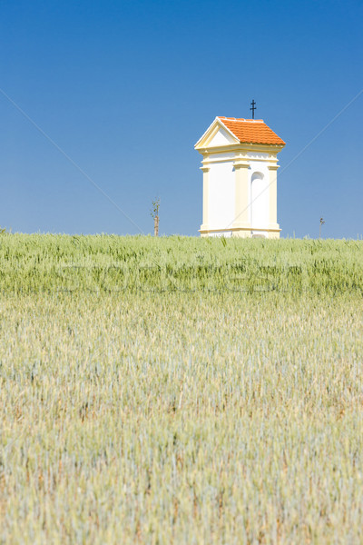 God's torture with grain, Southern Moravia, Czech Republic Stock photo © phbcz