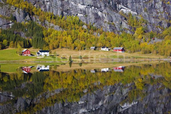 landscape near Otta river, Norway Stock photo © phbcz