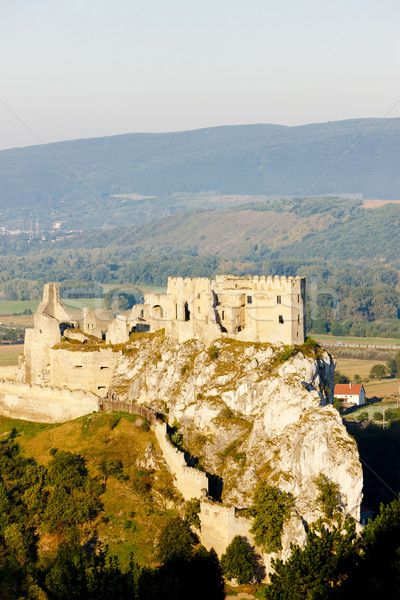 Ruiny zamek Słowacja budynku architektury historii Zdjęcia stock © phbcz
