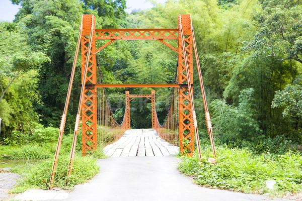висячий мост моста зданий архитектура тропические Открытый Сток-фото © phbcz