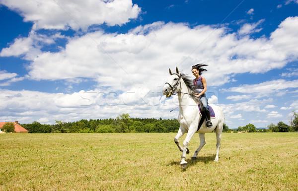 Caballo mujer animales jóvenes caballos Foto stock © phbcz